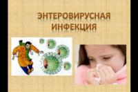 О мерах профилактики энтеровирусных инфекций